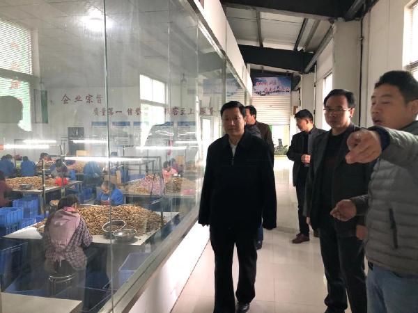 洛南县政协开展核桃产业发展带案视...