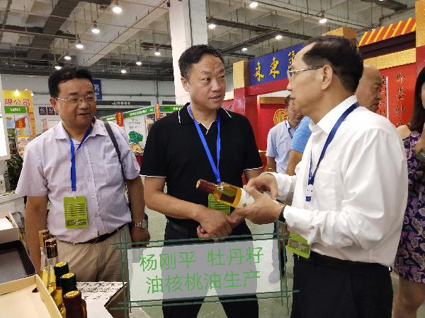 政协委员杨刚平发展油用牡丹引领贫...