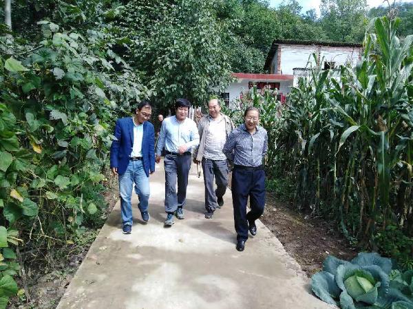 洛南县政协主席张岳峰深入八道河村检查指导脱贫攻坚工作