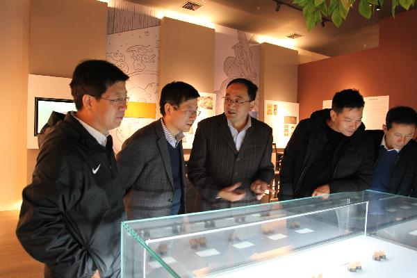 市政协委员集中视察洛南县核桃交易中心项目