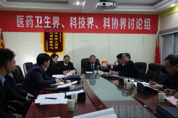 政协委员分组讨论议发展