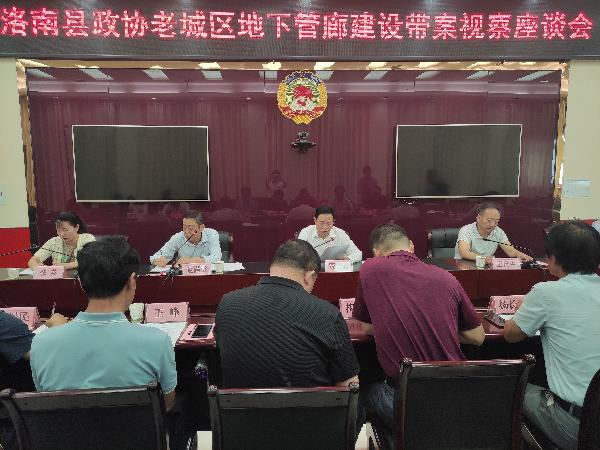 洛南县政协委员视察老城区地下综合...
