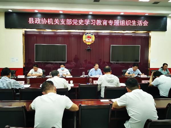 洛南县政协机关支部召开党史学习教...